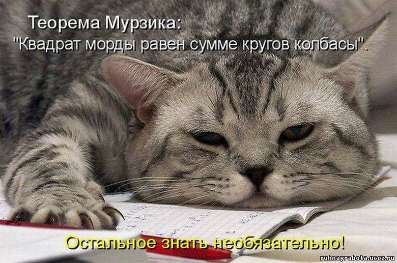 http://ruhnayrabota.ucoz.ru/_pu/0/25909691.jpg